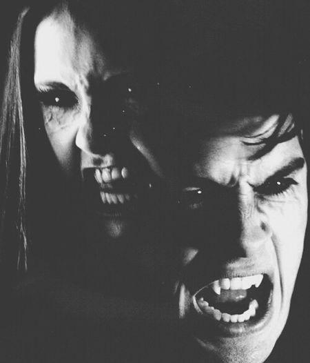 My Favorite  serial, Vampire Diaries
