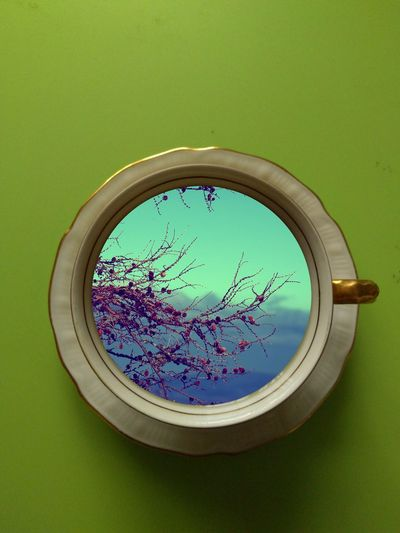 Dreamy Creative Photography Green Background Inspiration Look Through Porcelain Cup Sky And Clouds Tree Branches What Do You See? Cut And Paste