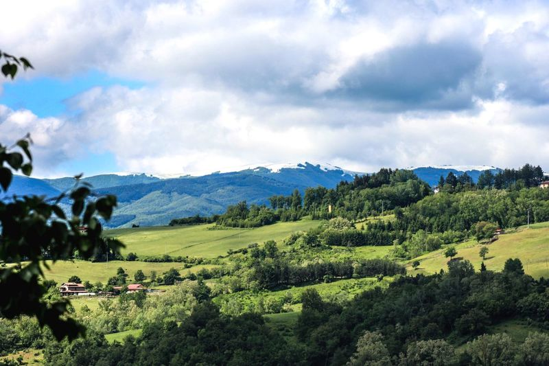 Snow on Pratomagno Tuscany Countryside Tuscany Valley Snow On Mountains Pratomagno Casentino Cloud - Sky Sky Scenics - Nature Landscape Plant Environment Land Beauty In Nature Tree Mountain Tranquil Scene Field Nature Green Color Non-urban Scene Rural Scene
