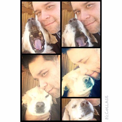 Amo Mi Perro