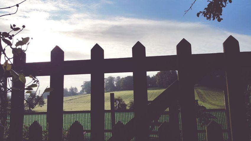 Gate Rural Landscape Sun And Trees Treescape