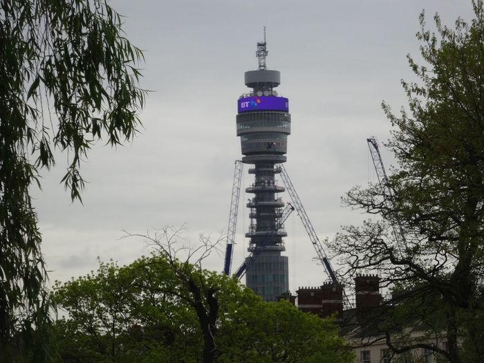 BT Tower London Built Structure Architecture Tower Building Exterior Tree Sky Tall - High