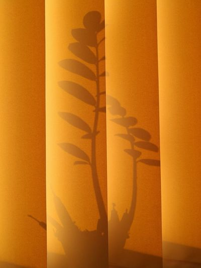 Yellow Textured  Plant Pattern Bands Backgrounds Shadows & Lights No People Full Frame Indoors  Close-up Day Shadows Silhouettes Silhouette_collection Parallel Curtain
