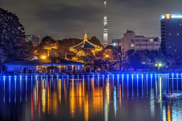 Tokyo数寄フェス ミナモミラー Lake EyeEmNewHere Illuminated Water Night Architecture Tree AI Now! Reflection Waterfront No People Nature Outdoors