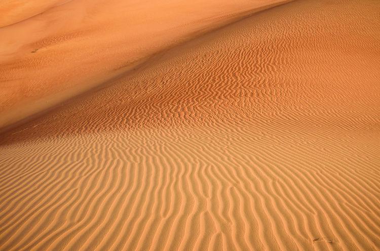 Abu Dhabi Abu Dhabi UAE Abudhabi Arab Arabian Arabian Desert Arabic Beauty In Nature Desert Desert Beauty Desert Curves Desert Dunes Desert Landscape Desert Lines Deserts Around The World Dunes Gulf Landscape Liwa Liwa Desert Middle East Nature