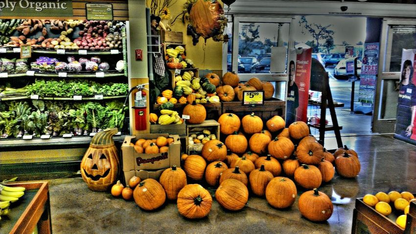 Happy Halloween! Hi! TheVille Streamzoofamily Streamzoo Family Check This Out This Is My Thank You...
