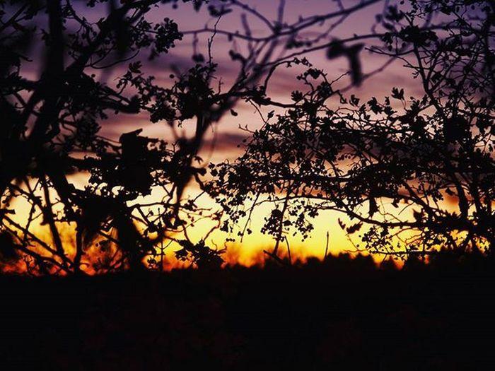 Und noch mehr :) http://bit.ly/1XLrarr Evening Colours Besteswetter