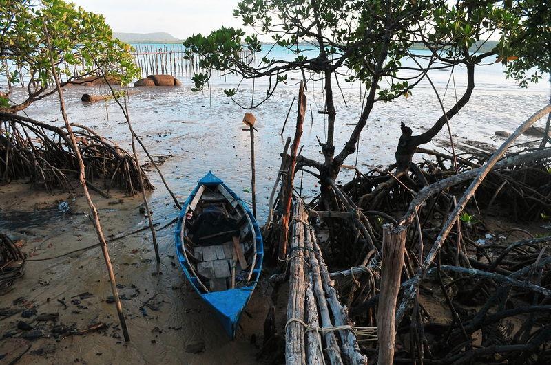 Illustration INDONESIA Bintanisland Bintan  Tropical Climate Tropical Paradise Water Nautical Vessel Sky Commercial Fishing Net Fishing Equipment Fishing Boat Fisherman Gondola - Traditional Boat