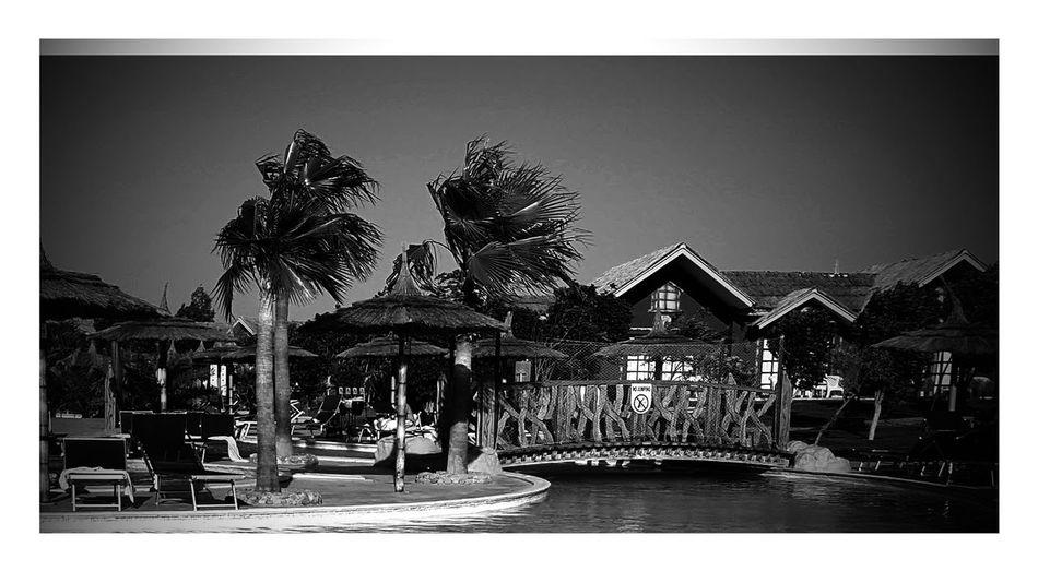 Egypt Ägypten Red Sea Ägypten  Sunsets Sunset Sonnenuntergang ❤ Hurghada Red Sea Schwarzweißfotografie Schwarzweiß Schwarz & Weiß Blackandwhite Black & White Black And White Blackandwhite Photography Monochrome Photography
