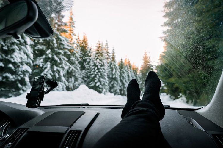 Low section of person in car against snowy mountain road and pine trees at sunset