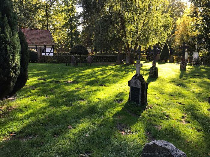Alter Friedhof.