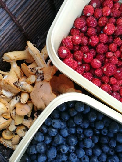 Healthy Eating Close-up Nature Goodness Forest Berries And Mushrooms Blueberries Wild Strawberries Chanterelles