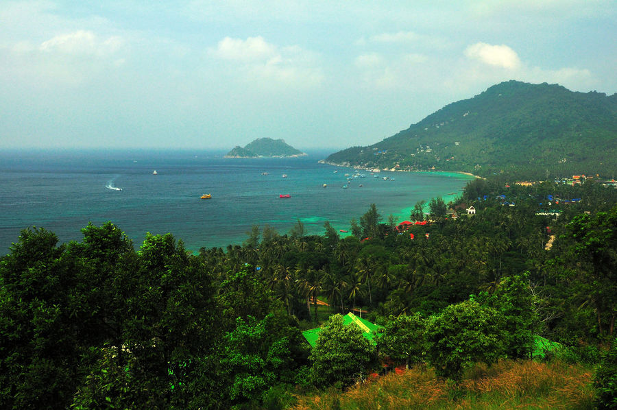 Beauty In Nature Day Koh Tao Koh Tao, Thailand Koh Tao,Tao Island,Southern Thailand Mountain Nang Yuan Island Nature Outdoors Plant Scenics Sea Sky Water