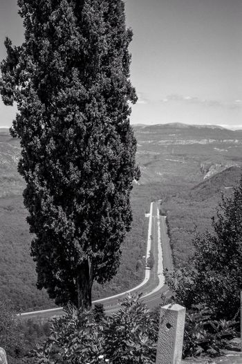 View from Motovun on the D44 to Motovunska Šuma and River Mirna (north-east direction). Geometry Unnatural Beauty? Istria Istra Croatia Monochrome