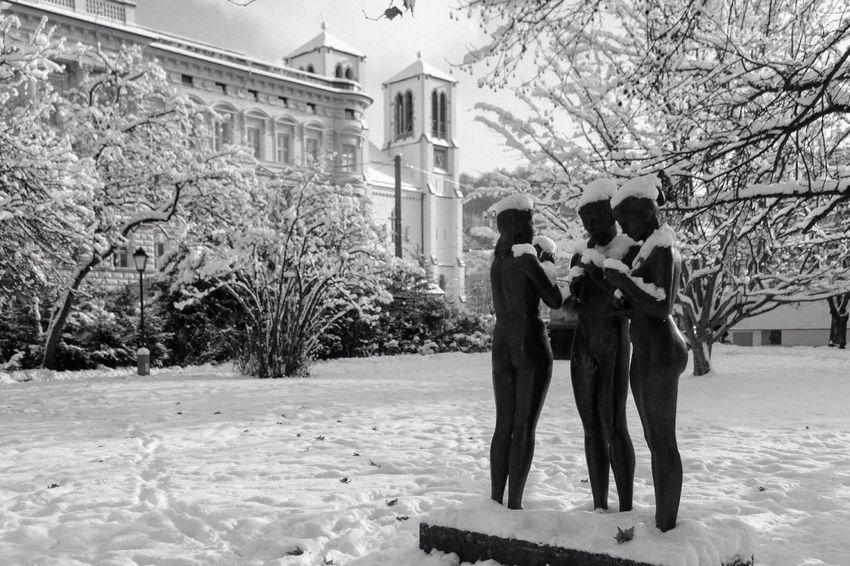 Showcase: February Winter Hivern Invierno Streetphotography Austria Österreich EyeEm Best Shots