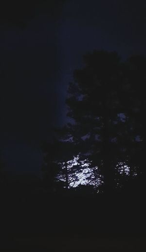 Night Tree Stormy Weather Lightening Storm Lightning Strikes Lightening Effect Lightening Flash No People Outdoors Sky Nature Beauty In Nature