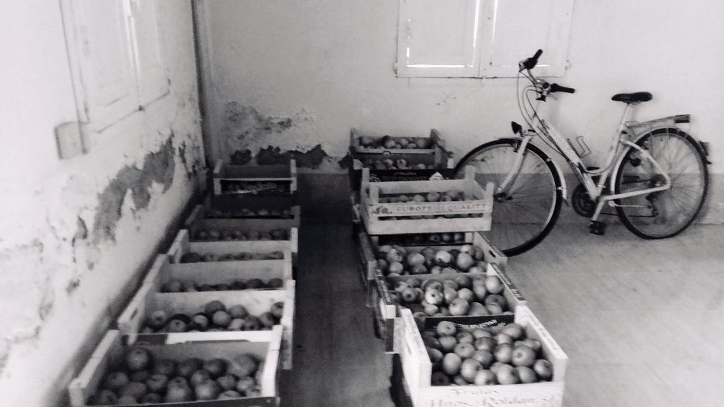 Aples Bicycle Ecologic Blackandwhite Photography No People