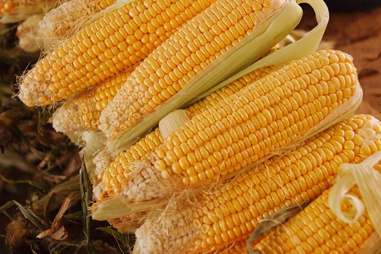 High Angle View Of Corns For Sale