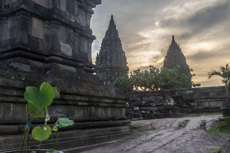 Hinduism UNESCO World Heritage Site Architecture Building Exterior Built Structure Day Growth Hindu Temple History Leaf Nature No People Outdoors Place Of Worship Plant Prambanan Temple Religion Sky Spirituality Tree
