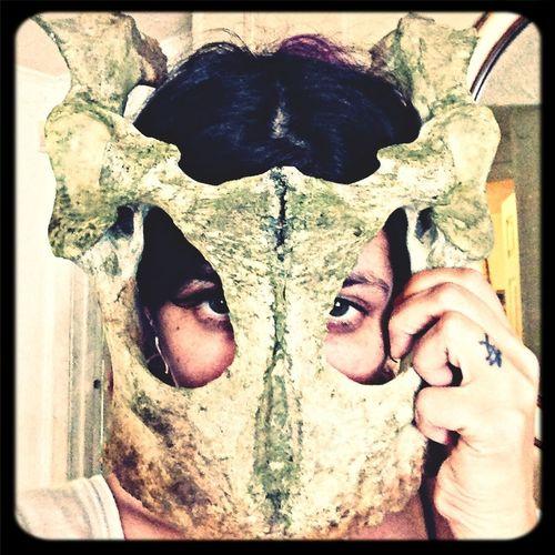 Hello World CowBones Mask Ilovehalloween