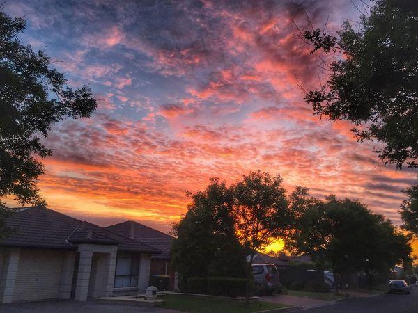 Sunset Mobilephotography Taking Photos Orange Sky
