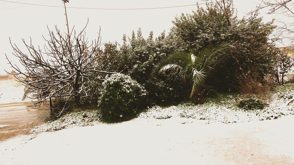Athens, Greece Winter Snow ❄