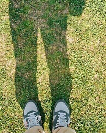 Portra800 Olympus倶楽部 Olympuspeneed Myolympusstyle Film Filmphotography Filmcamera オリンパス倶楽部 オリンパスペンEED フィルム写真普及委員会 フィルム写真 フィルムに恋してる Kodak フィルム ふぃるむカメラ フィルム部 ハーフサイズカメラ 写真好きな人と繋がりたい ファインダー越しの私の世界 カメラ好きな人と繋がりたい カメラ日和 お写んぽ コダック ポートラ800 Halfsizecamera オリンパスPENEED 芝生 silhouette