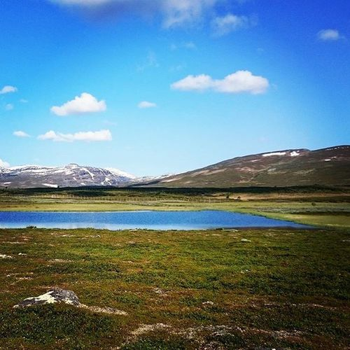 Marvelous view on the hike up to the reindeers! Oviksfjällen Bartjan Bestofjamtland