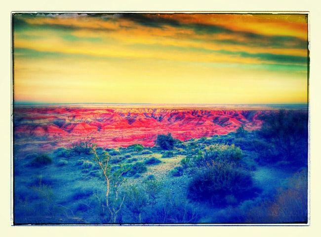 Petrifiedforest Nationalpark Arizona Desert