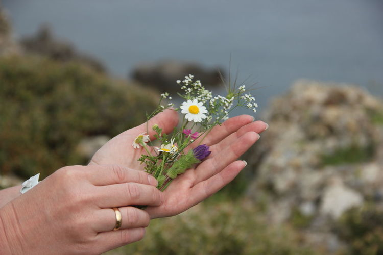 bouquet Flower Flowering Plant Hand Nature One Person Day Bouquet Flower Arrangement Outdoors Women Lifestyles Human Hand
