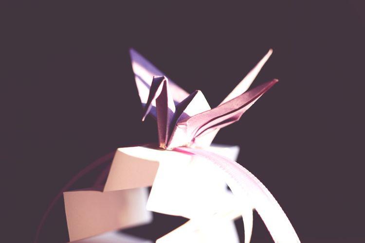 Studio Shot No People Celebration Close-up Black Background Indoors  Night Origami Art Paper Paperbirds Bird Japanese  Light And Shadow Light Lights The Portraitist - 2017 EyeEm Awards Hello World