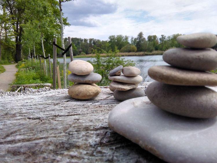 Beautifully Organized Close-up Day Nature Beauty In Nature Zen Garden