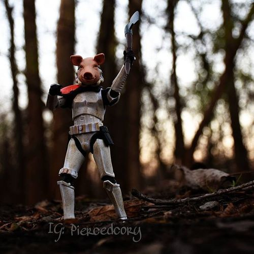You kids stay out of my woods! Porkfacetales Schleich Potbelliedpig