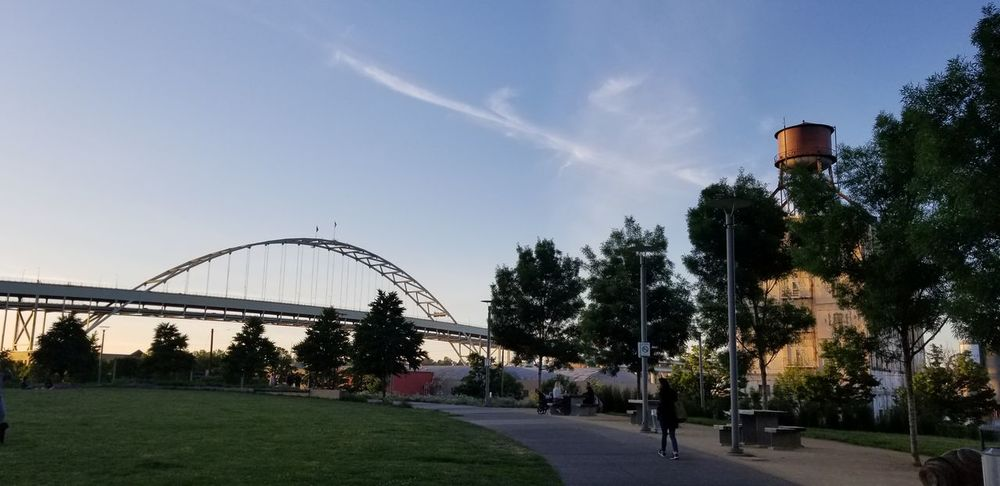 Fremont bridge on Willamette river Bridge - Man Made Structure Sunny Water Trees Greenery Park Water Tank Tree City Park - Man Made Space Sky Sunset
