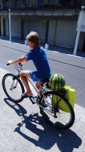 Boy Riding Bicycle On Street During Sunny Day