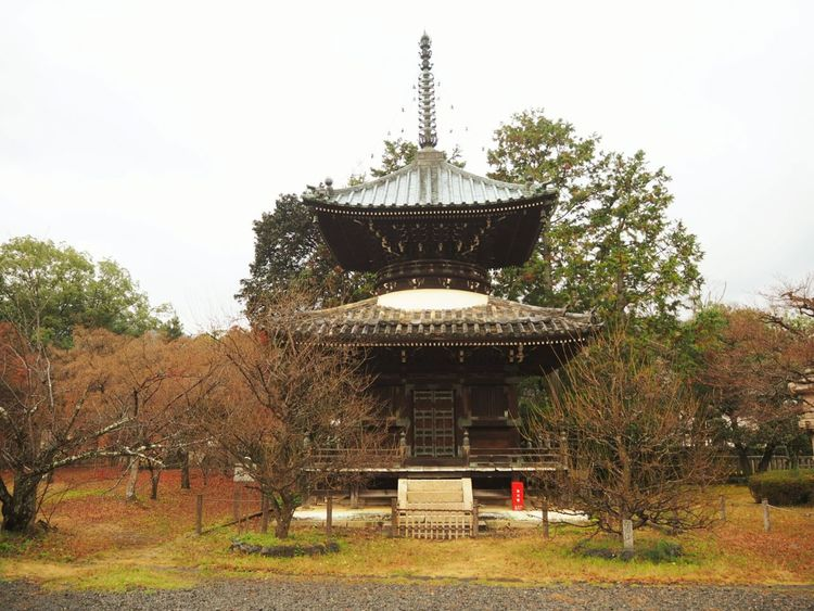 Temple Kyoto,japan Relaxation Recreation  Healing Bright Hope Peace Wish Spirit Love Luck Beautiful Happy Cool JapanLife