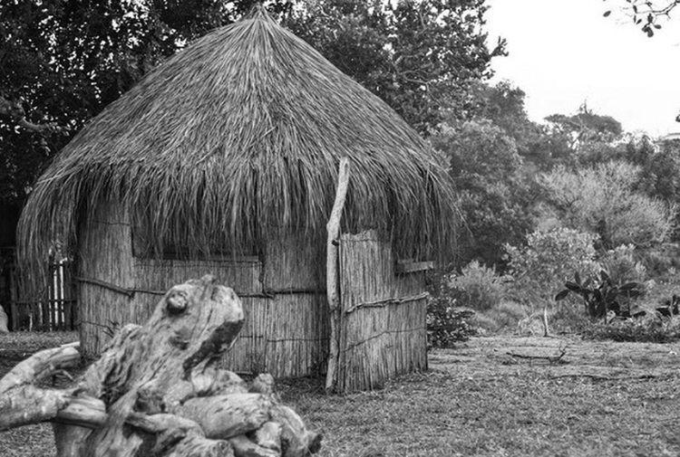 Mozambique hut