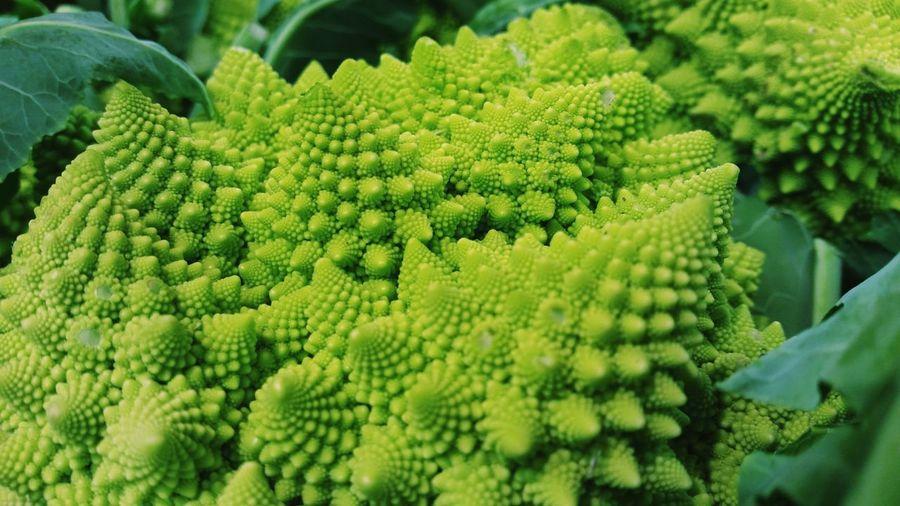 Close-up of fresh romanesco cauliflower