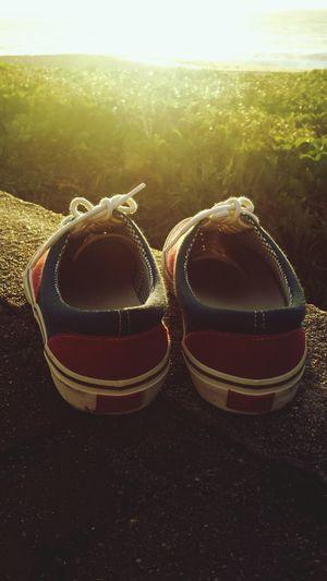 Redley Shoes