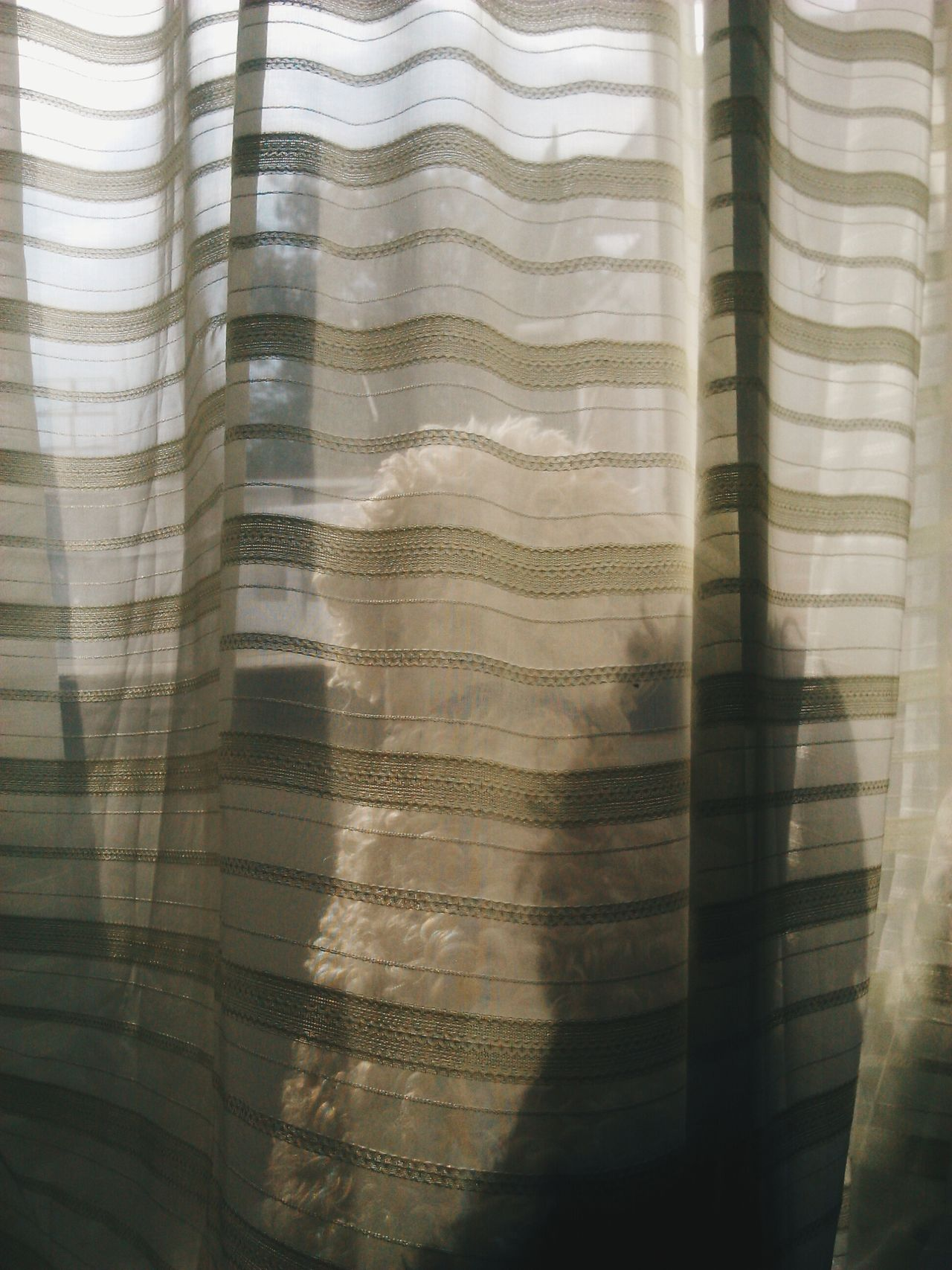 VIEW OF CURTAINS ON WINDOW