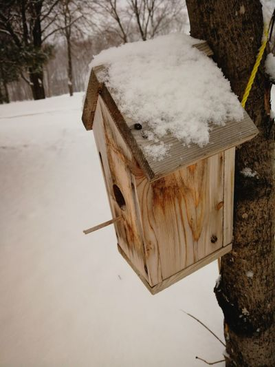 Close-up Birdhouse Wood Winter Peaceful Winter Cold Temperature Outdoors Day Nature No People Snow