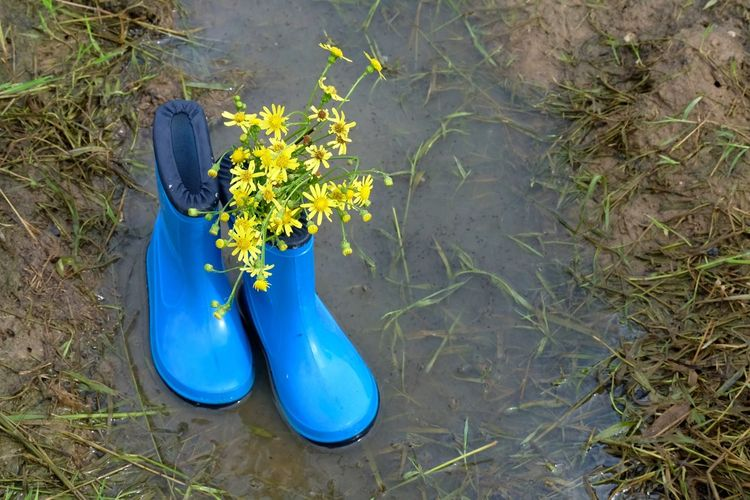 Blue Close-up EyeEm Best Edits EyeEm Nature Lover Grass Gumboots Nature Nature_collection No People Outdoors Puddle Puddleography Rubber Boots Wellington Boots Welly Wildflowers Two Is Better Than One Lieblingsteil