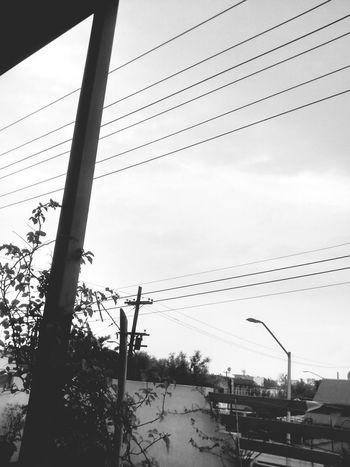 Rain ☔💧