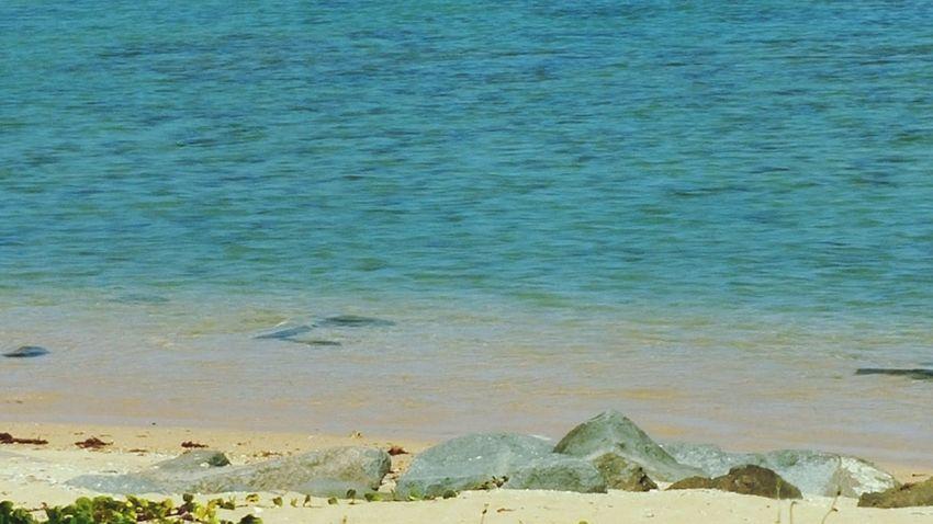 Prende Enjoying Life Being A Beach Bum Getting A Tan