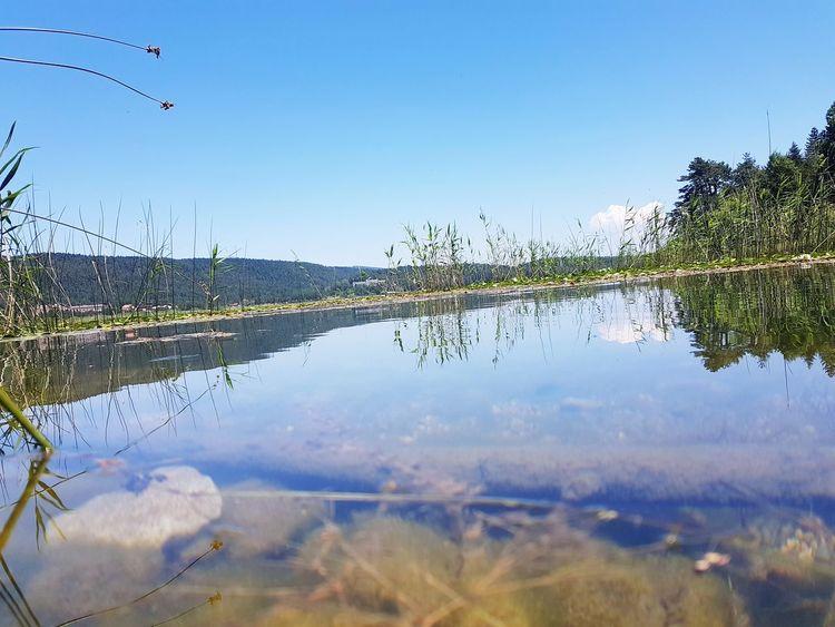 Bolu Abant Turkey First Eyeem Photo Lake Abantgölü Water
