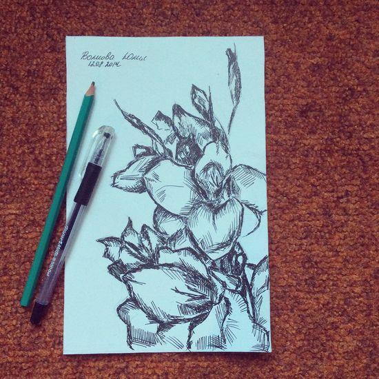 Flowers Art My Art