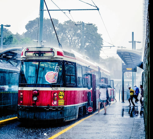 Without rain, there would be no life! Cinematic Rain Summertime Toronto Canada Toronto Landscape Architecture Canon Canonphotography Car Day Land Vehicle Men Mode Of Transport Outdoors People Real People Sky Streetphotography Summer Thankyoucanada Thankyoutoronto TorontoLife Torontophotographer Transportation Ttc EyeEmNewHere