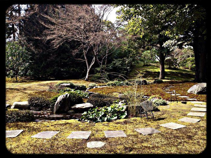 城南宮 神苑「平安の庭」ここで春と秋に曲水の宴が行われるそうです。 Garden The Purist (no Edit, No Filter) Taking Photos IPhoneography