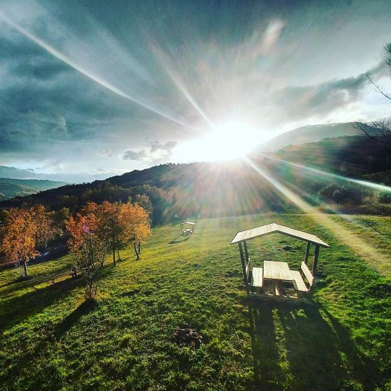 Abruzzo Sunlight Sky Sun Grass Nature No People Outdoors Sunbeam Growth Tranquility Day Tagstagram Photooftheday Instafamous Tagstagramers Tagsforlikes Colours First Eyeem Photo Beauty In Nature Nature Photography Italy Sunset Park Instatrees Adapted To The City EyeEmNewHere