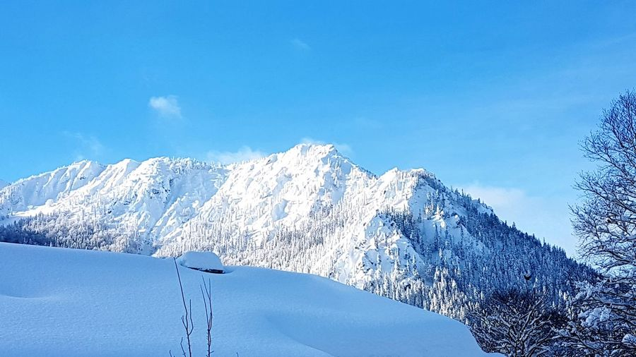 Schneeberge Mountain Sunset Sunnyday☀️ Mountain Snow Cold Temperature Winter Tree Sky Animal Themes Landscape Snowcapped Mountain Mountain Range